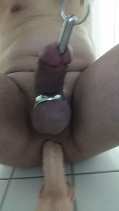anal dildo and cock sounding