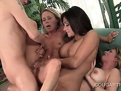 orgasm-starved-cougars-having-hardcore-sex-in-foursome