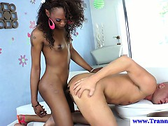 ebony-shemale-pounding-tight-ass-in-high-def