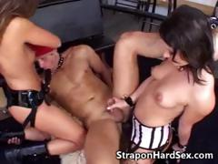 strapon-babes-fuck-male