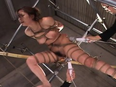 asian-honey-roped-up-getting-toy-fucked-marvelously