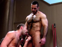well-hung-bears-spunk