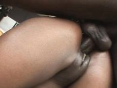 phat butt bouncing black honey