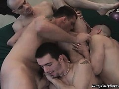 Nasty Dudes Are Having Some Awesome Party. It All Turns In