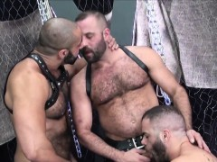 suspended-bear-jerks-out-cum-in-bareback-trio