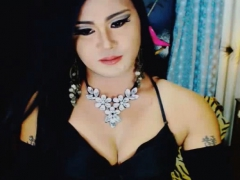 Pretty Shemale Jerking Her Dick on Cam