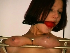 muffin torture in s&m scenes PornBookPro