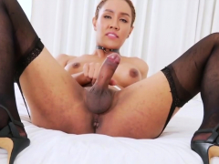 ladyboy-milk-a-is-eager-to-jerk-off