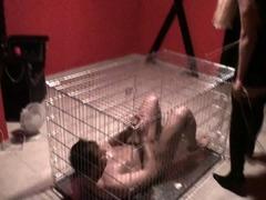 slave-mohammed-get-hard-sticks-torture-in-cage